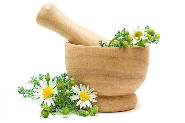 цветки ромашки имеют целебные свойства