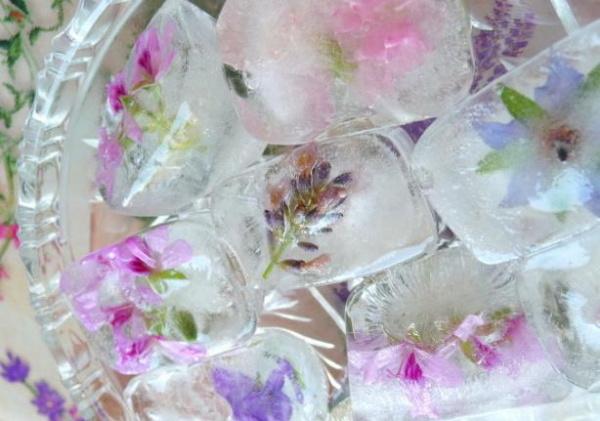 кубики льда из отваров трав